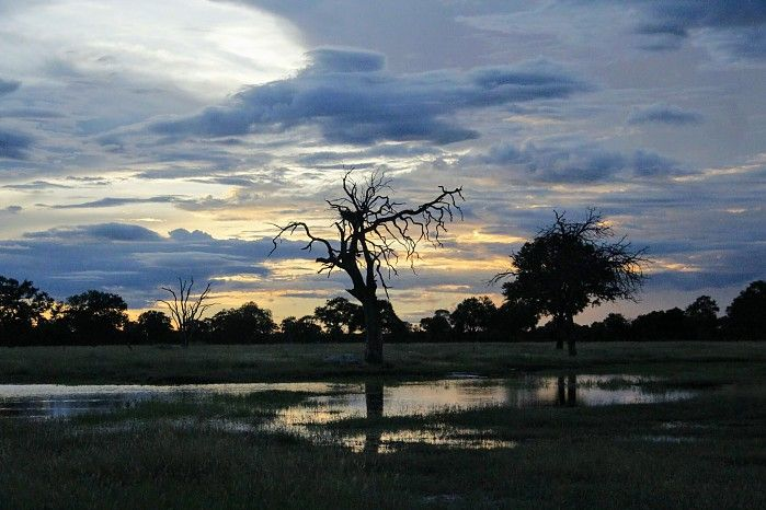The late-season rains provided some jaw-dropping photographic opportunities on the Zambezi River and around Mana Pools...