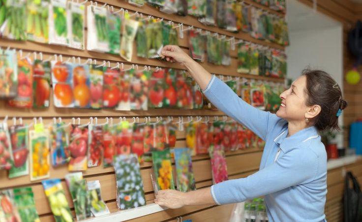 Die Saatgut-Auswahl im Gartencenter überfordert so manchen Hobbygärtner