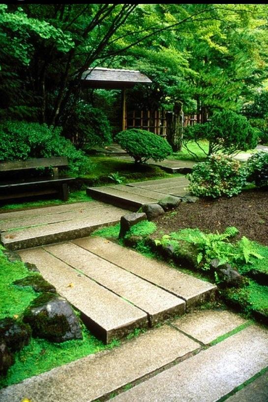Bonito camino de madera en el jardín