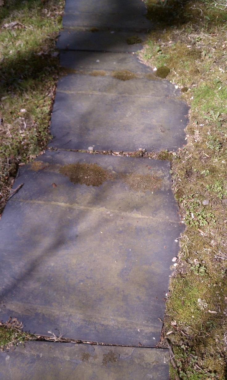 """Slate-and-moss Path to the Past"" - photo snapped by me in Stamford, CT, April 4, 2012 while thinking of Aprils from 1965-1983"