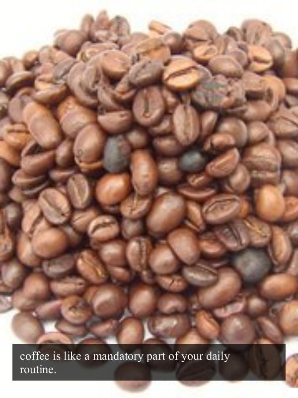 Yeti Coffee Travel Mug 20 Oz Bean Container Air