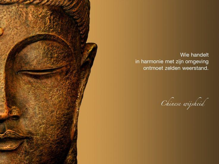Wie handelt in harmonie met zijn omgeving ontmoet zelden weerstand. / Chinese wijsheid