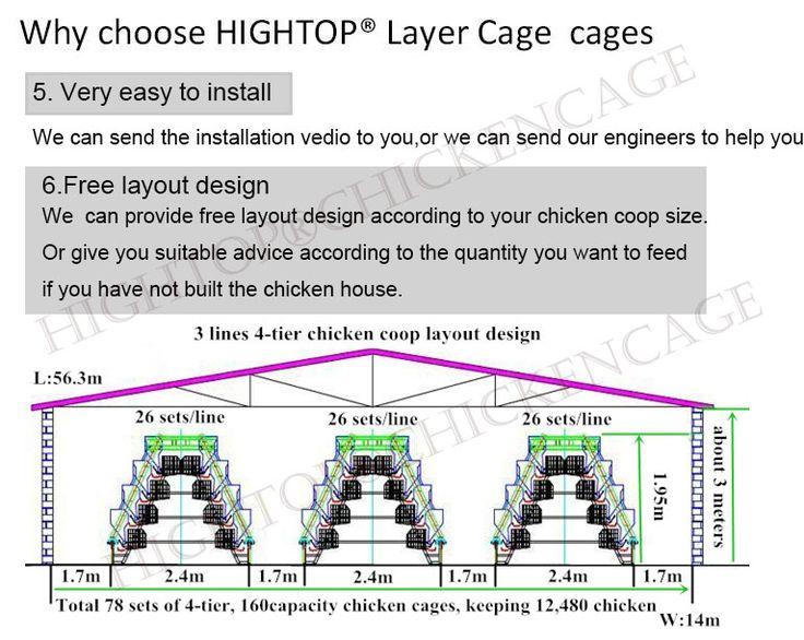 Chicken Layer Diagram - Electrical Work Wiring Diagram •