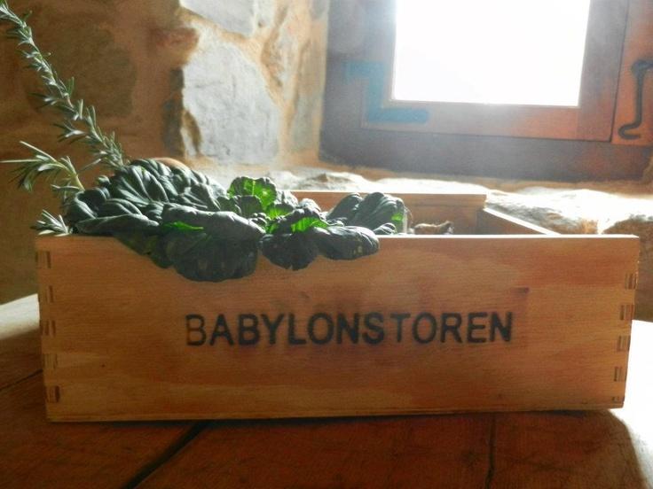 #Babylonstoren
