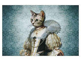 11 besten katzen bilder auf pinterest katzen lustiges und ausfallen. Black Bedroom Furniture Sets. Home Design Ideas