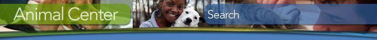 Wake County Animal Center Adoption Gallery