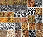 Animais padrões de pele - conjunto de 34 texturas selvagens