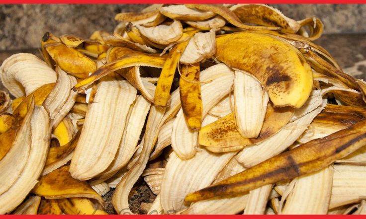 Buccia di banana: 8 usi per la casa che non conoscevi