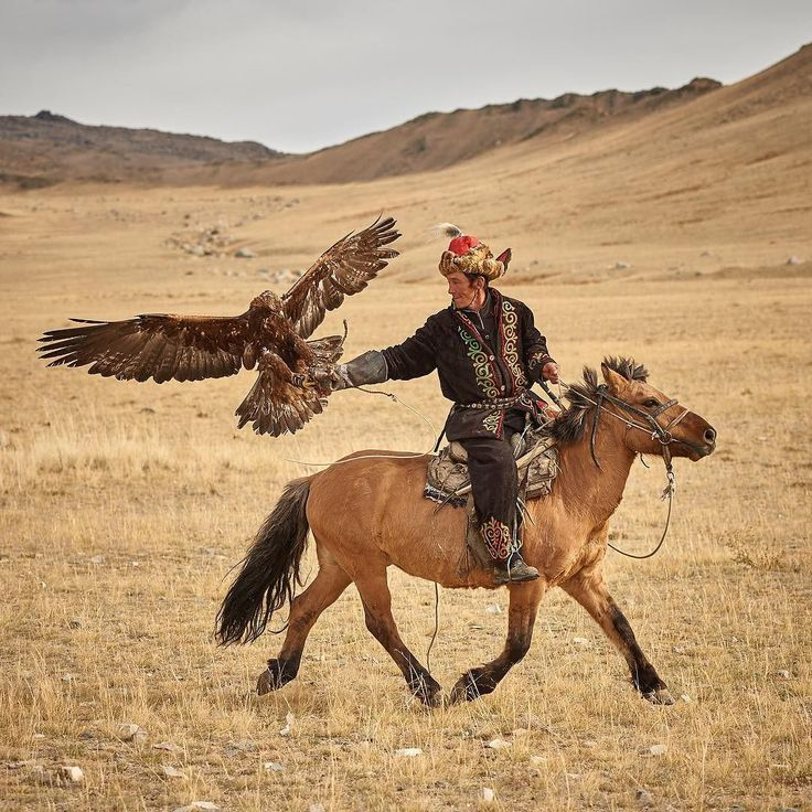 Follow me on Instagram http://ift.tt/2dozsWR With talons outstretched a Golden Eagle returns to her Kazakh hunter's arm. #mongolia #Kazakh #eagle #photoadventure #remotelocations #explore #ulgii