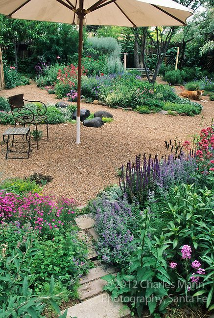 Low-water plants and gravel paths that widen into patios: Water wise landscape design for southwest and Rocky Mountain areas