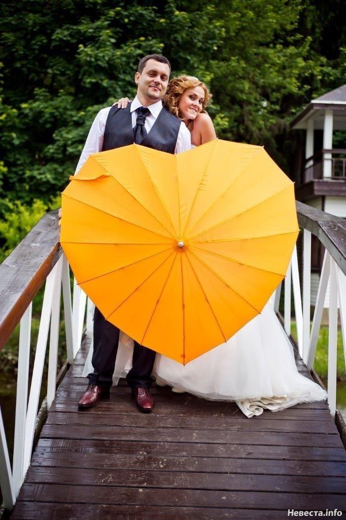 невероятно зонт для свадебной фотосессии становился свидетелем