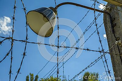 Lamp on barb wire fence