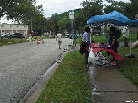 Missouri GOP: Michael Brown Voting Registration Booths 'Disgusting'
