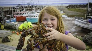 Catch of the day in the Bay of Fundy // Alma, New Brunswick Canada