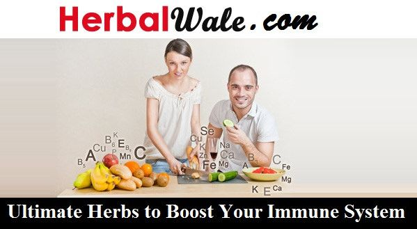 Ultimate Herbs to Boost Your Immune System #BabaRamdevMedicines  Baba Ramdev Products To Boost Immune SystemWeak immunity infers debilitating of the immune system. Weak immunity likewise prompts absence of assurance from ailments, Baba Ramdev products and Herbal Medicine immune system can offer help.