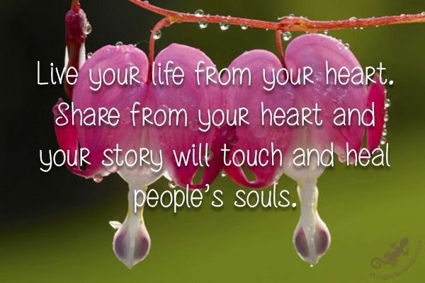 """""""Live your life from your heart. Share from your heart and your story will touch and heal people's souls.""""  #live #life #heart #share #story #touch #heal #souls  ©The Gecko Said - Beautiful Quotes"""