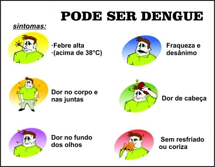 dengue images | BLOG OURO BRANCO NOTÍCIA: Surto de Dengue em Ouro Branco: Saiba quais ...