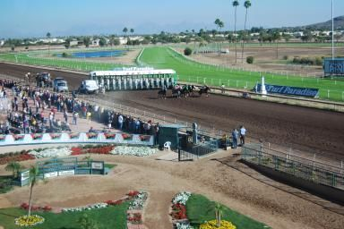 See Live Horse Racing at Turf Paradise in Phoenix: And they're off!