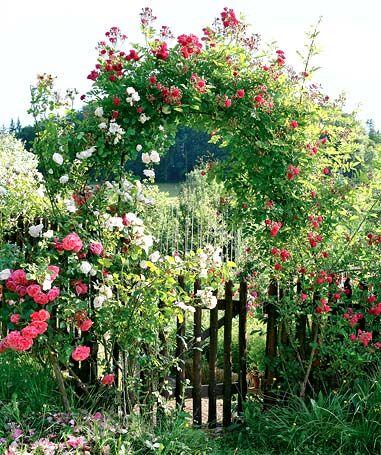 8 best Haus  Garten images on Pinterest Decks, Landscaping and - schoner garten mit wenig geld