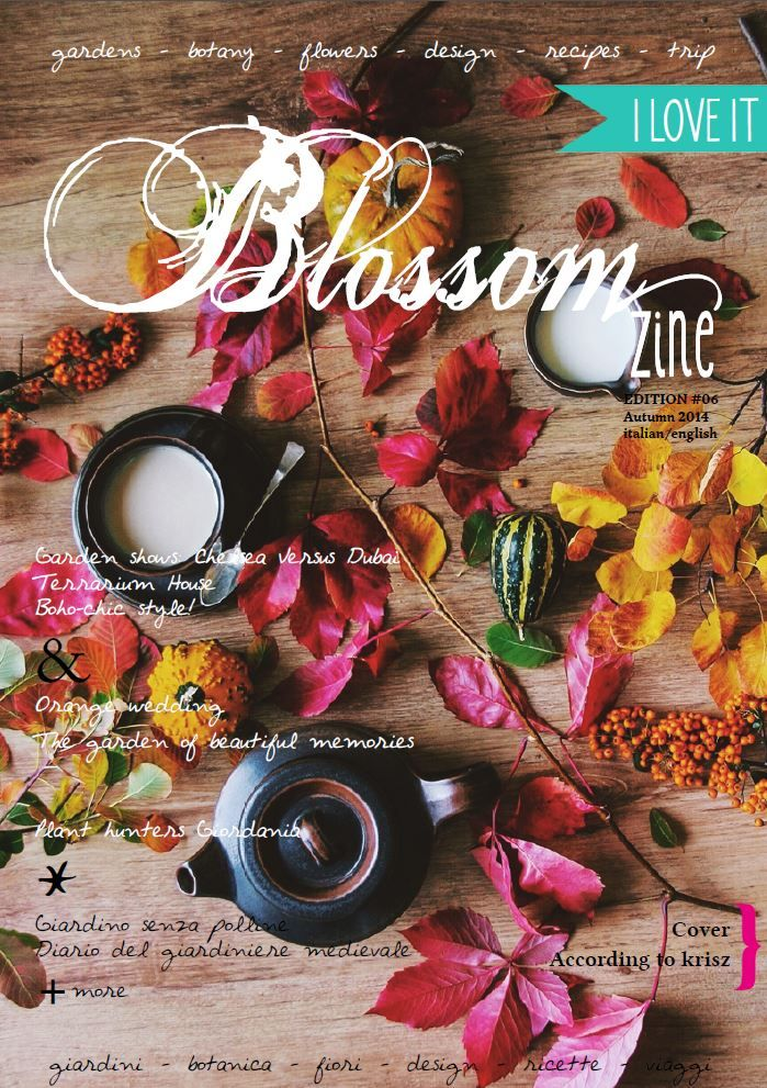 http://issuu.com/blossomzine/docs/n6_autumn_2014_blossom_zine/1  Autumn issue is online. Let's Fall in love!