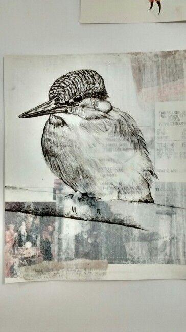 King fisher, bird, wildlife art, graphite drawing with textured background by Karolina Czerwinska
