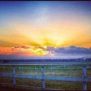 Sunrise on the Atherton Tablelands, such a great shot!  Via Ig  @tonkettitrading  #athertontablelands