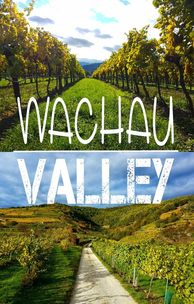 Zwischen Melk und Krems liegt die berühmte und malerische Wachau auch Wachau Valley genannt. Auf meinem Blog zeige ich dir einen wunderschönen Rundwanderweg in Niederösterreich! Panaroma Aussicht auf die Donau und die Weinberge inkludiert!