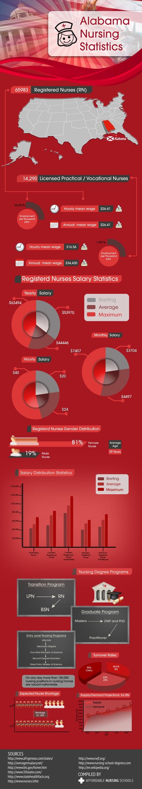 my path to a nursing career essay