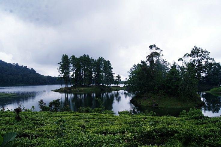 Cloudy!!! Situ Patengan, Ciwidey