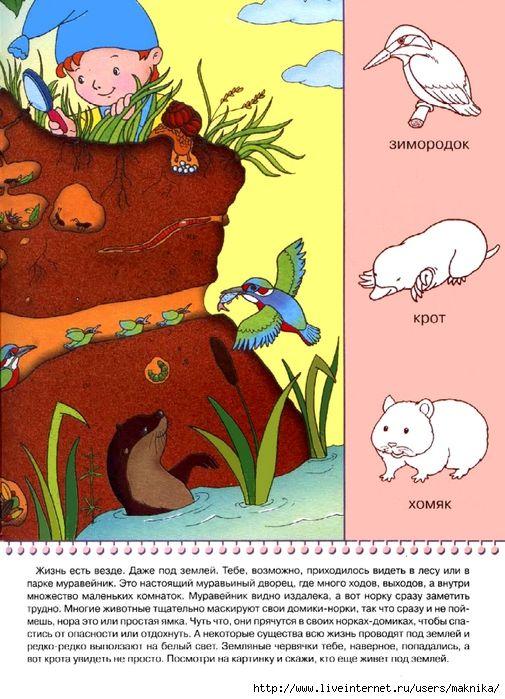dieren onder de grond 2