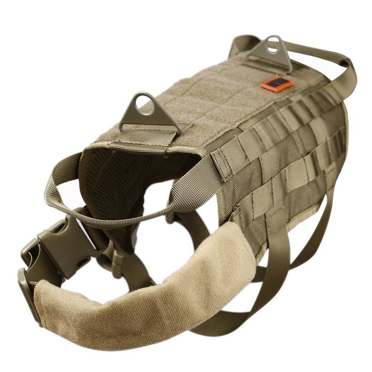 1000 Ideas About Dog Training Equipment On Pinterest