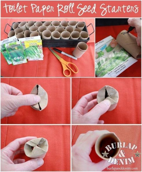 toilet paper roll seed starters, gardening, repurposing upcycling, DIY biodegradable seed pots
