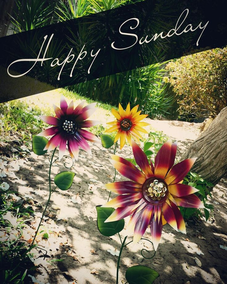 Have a great sunday everyone! :) https://www.etsy.com/listing/399490621/metal-sunflower-garden-stake-metal-yard