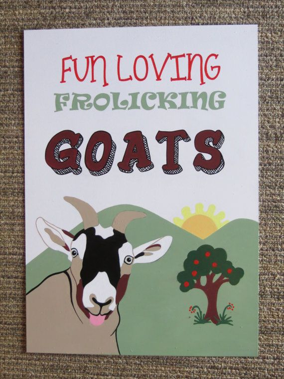 fun loving frolicking goats