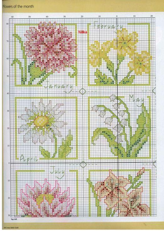 Gallery.ru / Фото #1 - цветочный календарь - irisha-ira