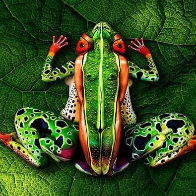 Amazing Body Art Illusions by Johannes Stoetter. Can You Spot The Hidden People?  #bodypainting #bodyart #art #illusion #green #frog