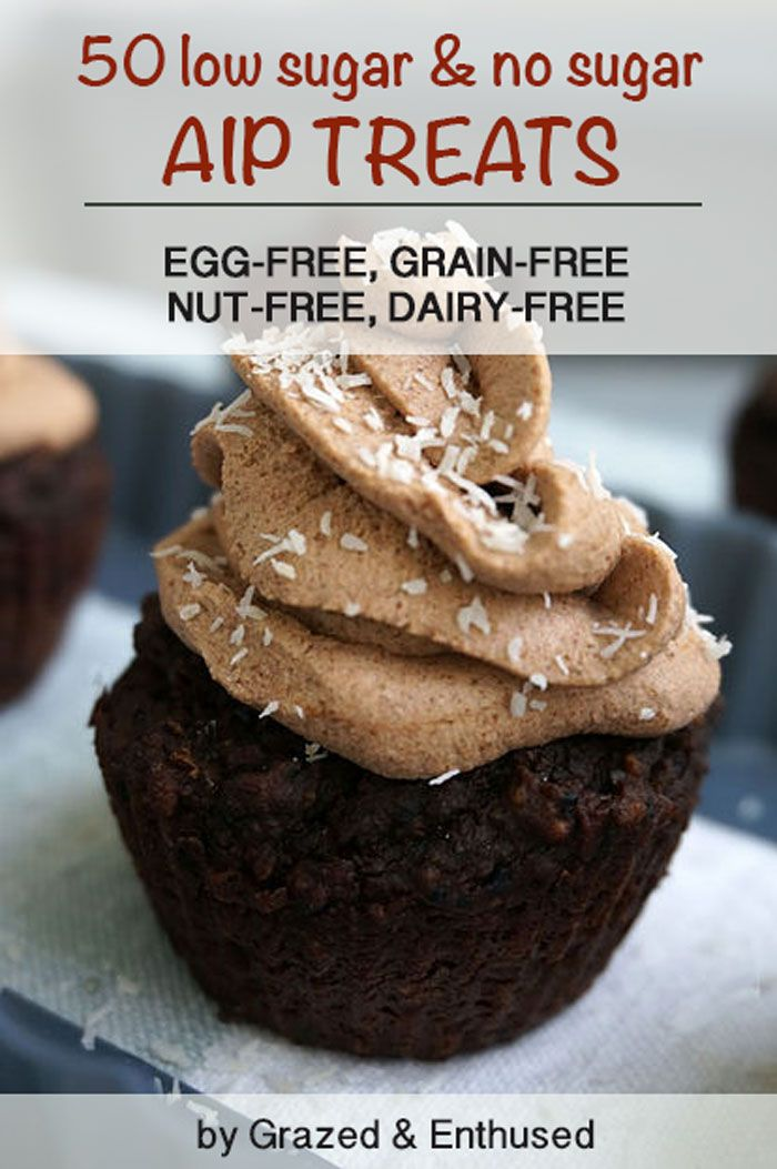 50 low sugar & no sugar AIP treat recipes from the AIP blogging community