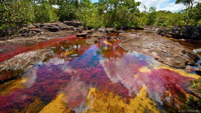 Sông Cano Cristales, Colombia. Trong một thời gian ngắn từ tháng Chín đến tháng Mười Một hàng năm, nước sông đổi từ trong veo thông thường sang rực rỡ sắc cầu vồng. Các sắc đỏ, lam, lục và cam được tạo ra bởi một loài cây rất đặc biệt của địa phương, cây Macarenia Clavigera nở hoa trong nước, và các loại rêu, tảo khác. Sông này nằm ở vùng hẻo lánh của dãy núi Serranía de la Macarena. Nó đã bị đóng cửa cho đến giữa thời thập niên 2000 do phiến quân hoạt động trong khu vực.