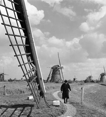Oude vrouw tussen de windmolens (ksnl 125)