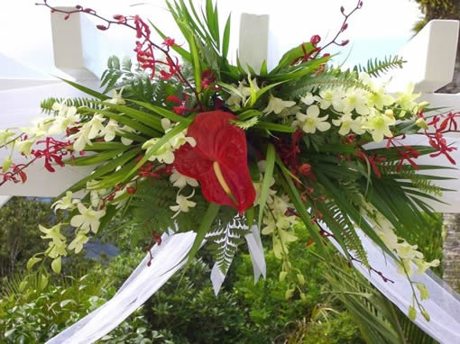 Best tropical forest wedding images on pinterest