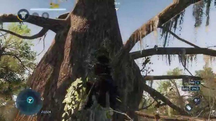 [Walkthrough] Assassins Creed Liberation HD - The Bayou: All Viewpoints