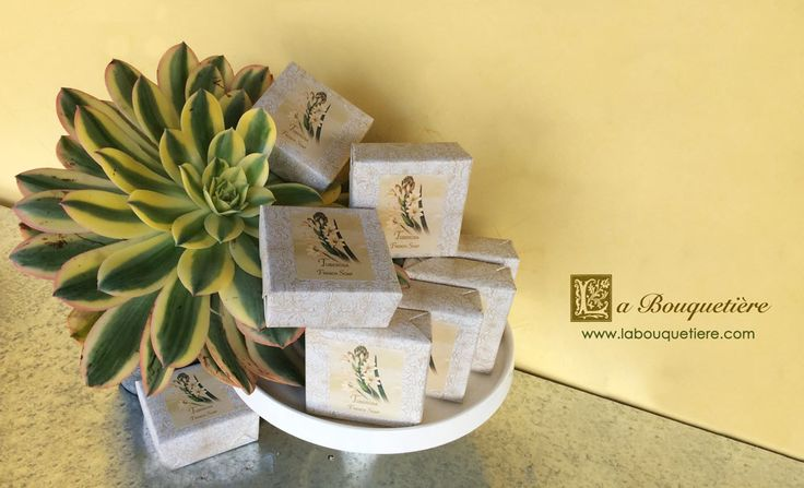 Your body will revel in the pure comfort of our luxurious, hand-pressed, Natural Moisturizing French Bar Soaps.