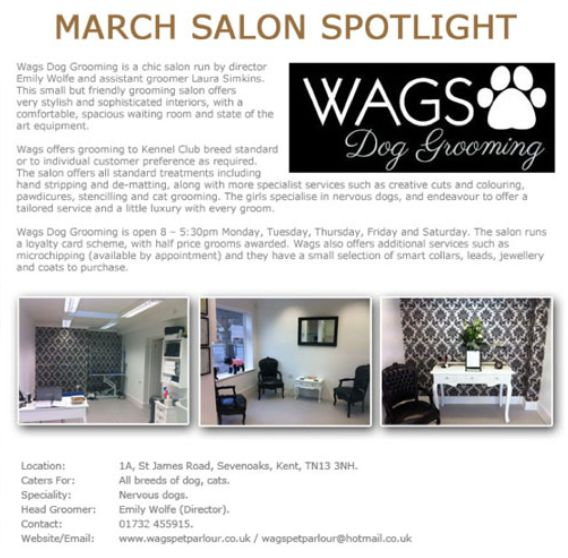 Salon Spotlight March 2013, Wags Dog Grooming
