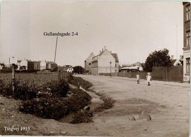Tingvej 1913