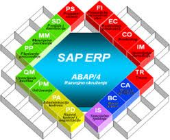 We are ERP & SAP technology partner of businesses from different niches.