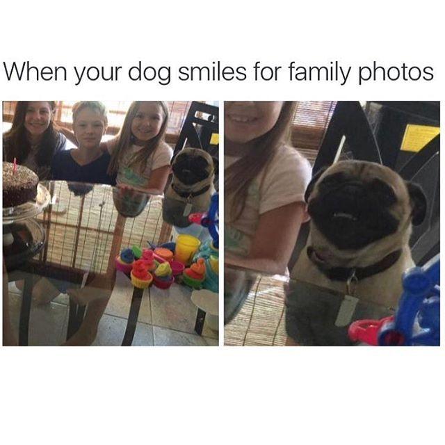 When your dog smiles for family photos - http://absurdpics.com/funny/when-your-dog-smiles-for-family-photos/