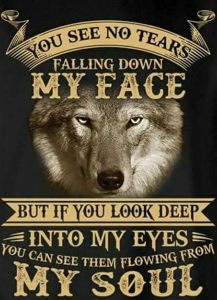My Soul Cries When You Look Deeper Into My Eyes Physically. Benjamin The Ravenous Wolf Experiences This On A Daily, And No One Knows.