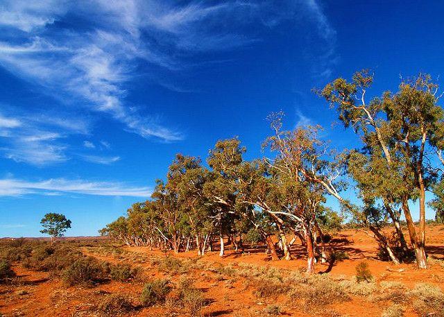 Australian outback | Australian outback colours