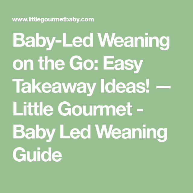Baby-Led Weaning on the Go: Easy Takeaway Ideas! — Little Gourmet - Baby Led Weaning Guide