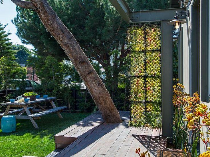 Airplant Frame Garden on AHAlife